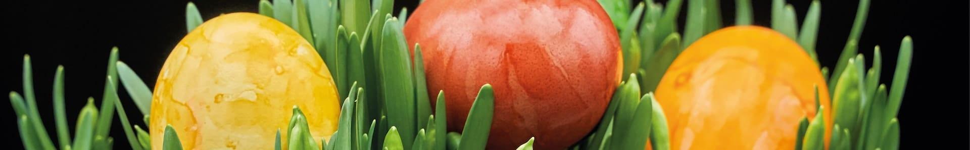 Blommor och buketter till påsk